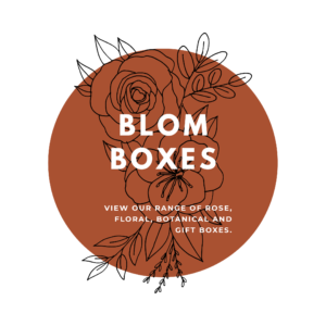 BLOM Boxes